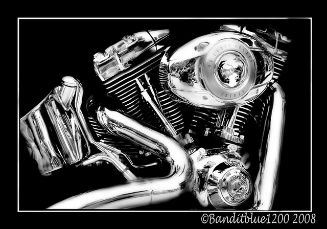 Harley Davidson on Black