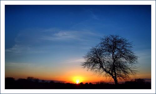 sunset yellow sunrise kenya alba blu ramonto theunforgettablepictures