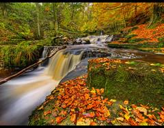 this IS autumn.....Crackpot Falls