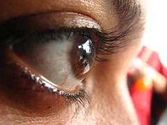 nose, brown, skin, eyelash, eyelash extensions, close-up, eyebrow, eye, organ,