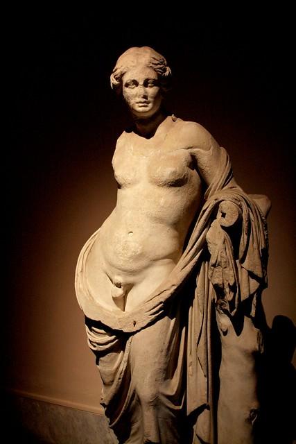 Hermaphrodite Sexy Pics 26