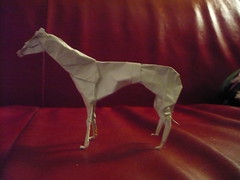 Paper Dog 13 Photos | Greyhound 2.3 | 955