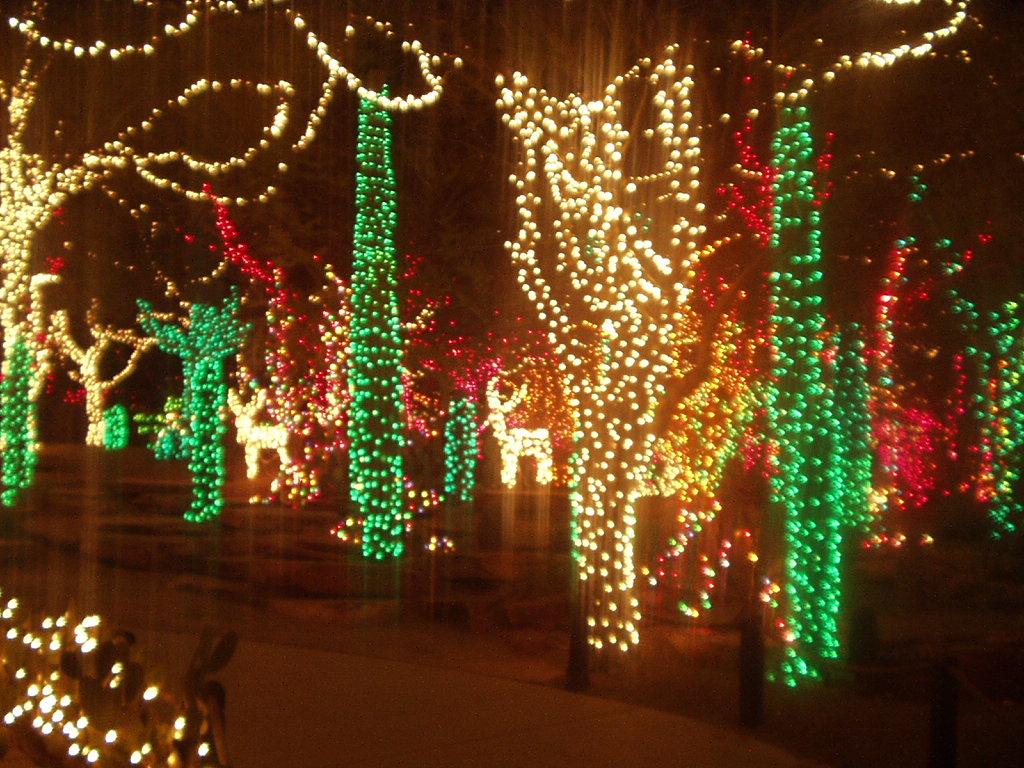 Christmas Light Show at Ethel M Cactus Garden near Vegas - a photo ...