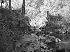Dam - Mason Mill Park