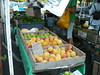 farmersmarket8_2 002