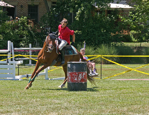 horses horse usa america kent hunter jumpers equestrian smalltown chestertown horsejumping ctown kentcounty smalltownamerica stadiumjumping chestertownmd jumpinghorses chestertownmaryland horseshowjumping nflravens kentco kentcountymaryland shoreshotphotography chestertownparade