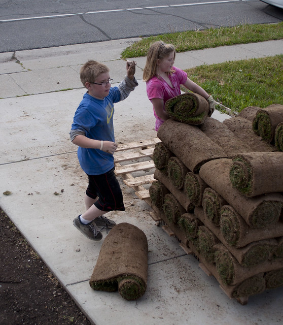 bungalow.grass.kids.980