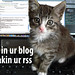 my first lolcat - in ur blog