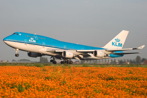 KLM 747-400 and Orange flowers