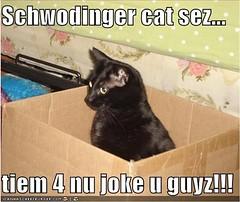 New joke, please!