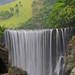 Reggae Falls - Jamaica
