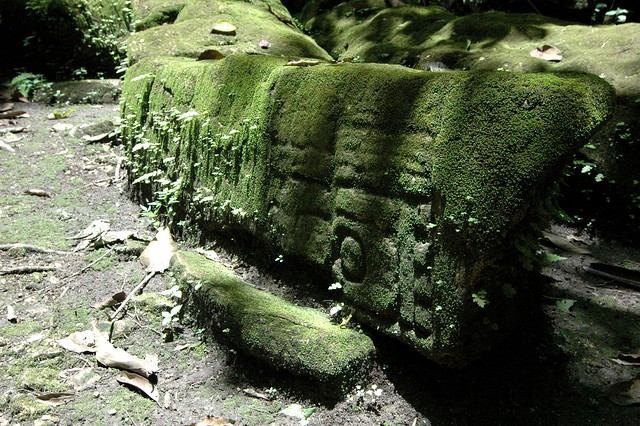 pi edras negras senior dating site The long running rivalry with piedras negras had already begun by the fifth century ad lintel 10 is the last known monument at yaxchilan, dating to 808.
