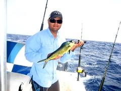 bass(0.0), cod(0.0), fish(1.0), fishing(1.0), recreation(1.0), casting fishing(1.0), outdoor recreation(1.0), jigging(1.0), big game fishing(1.0),