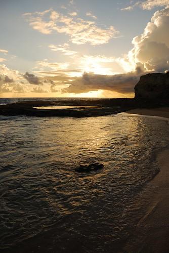 sunrise barbados littlebay