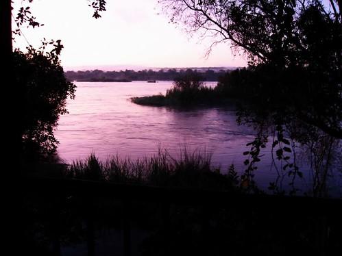 africa trees nature water grass sunrise dawn islands balcony branches steve lavender silhouettes lilac zambia zambeziriver 0178 peggyhr shadyezz siankabaislands