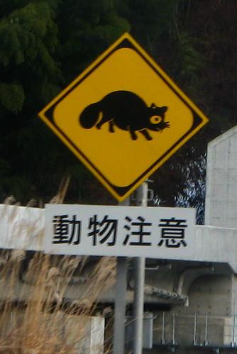 Tanuki Crossing