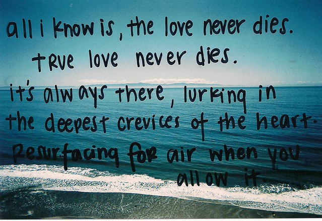 Quotes About Love Never Ending : 5741062368_c17e49a790_z.jpg