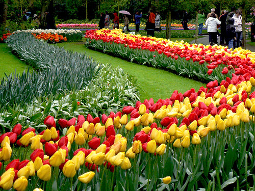 Jardines keukenhof flickr photo sharing for Jardines de keukenhof