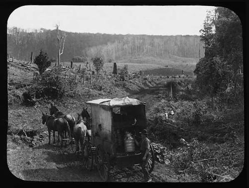 Horsedrawn milk cart