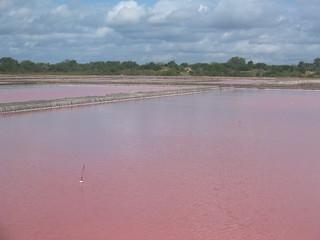 Salt lakes, Sandaani I