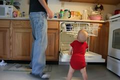 Dishwasher Working