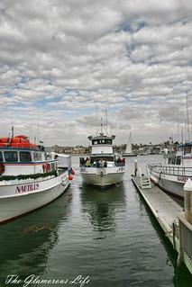 Newport, CA: Fishing boat returns