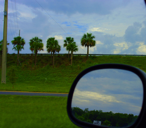 road color tree grass clouds mirror highway view no onramp palm pole cropped lead k20d riew