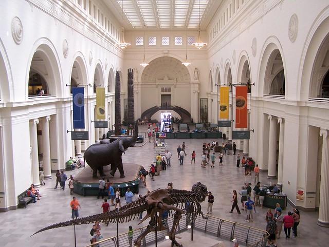 Field Museum in Illinois - Flickr CC danjbailey