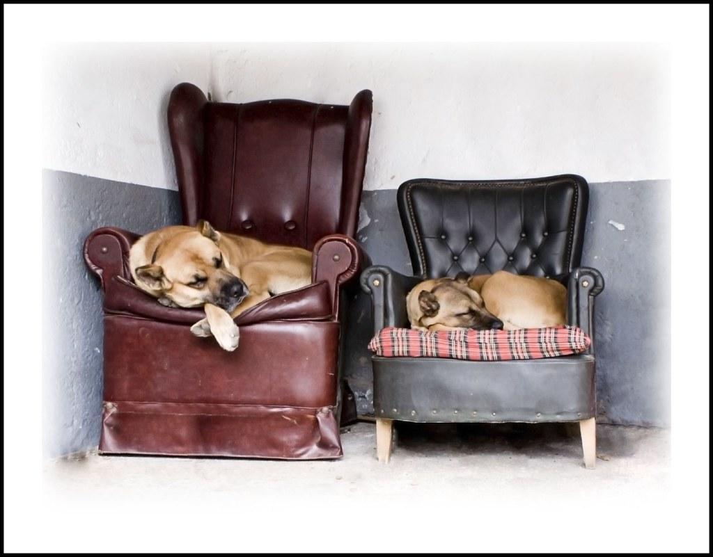 En los sofás