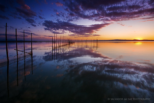 Stillness at L'Albufera lake