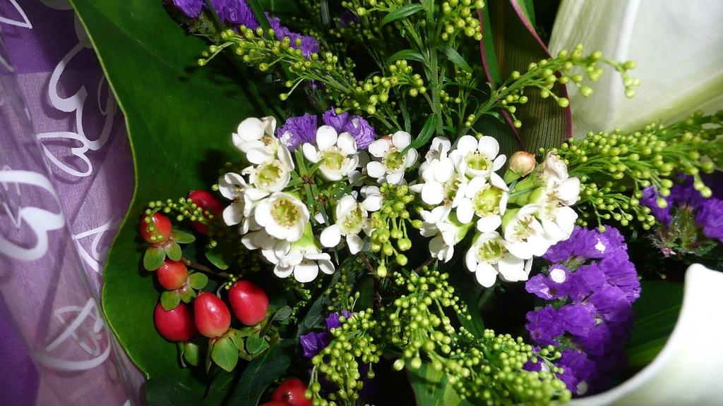 Bouquet Filler Bouquet Filler