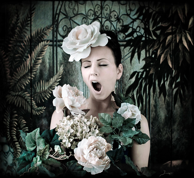 Kirsty Mitchell - tagged.......