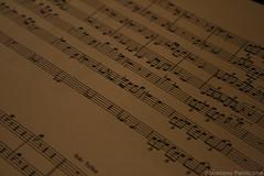 handwriting(0.0), wood(0.0), writing(0.0), number(0.0), musical instrument(0.0), guitar(0.0), design(0.0), string instrument(0.0), sheet music(1.0), text(1.0), music(1.0), line(1.0), font(1.0), close-up(1.0),
