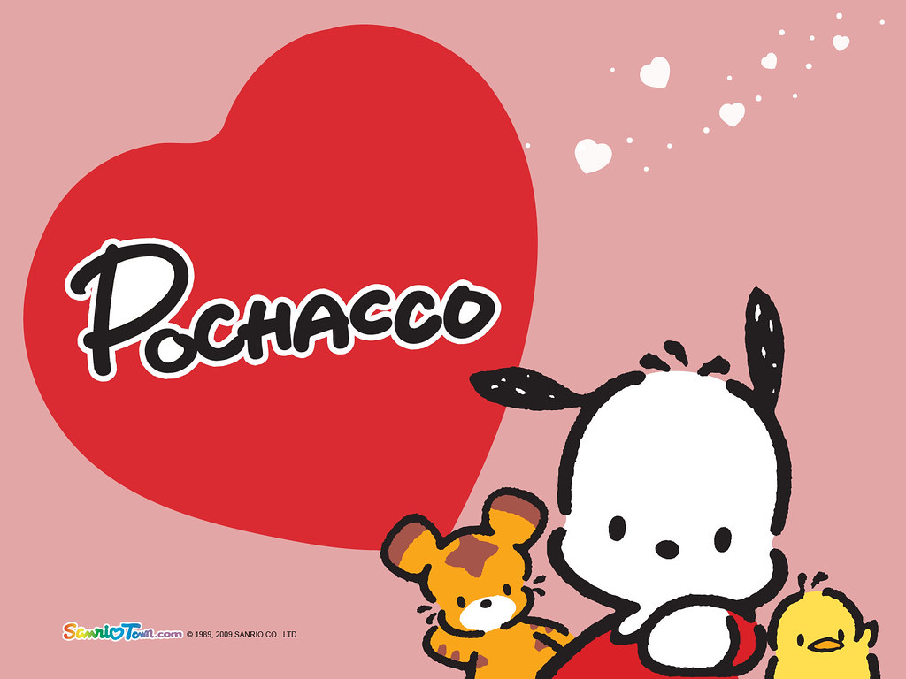sanrio pochacco wallpaper a photo on flickriver