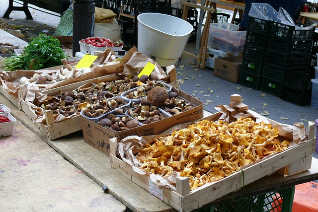 pilze -   Markt auf dem Winterfeldplatz, photo de Danilola sur Flickr