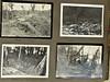 WWII photos.