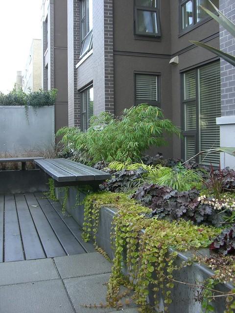 Townhouse landscaping joy studio design gallery best for Townhouse landscape design