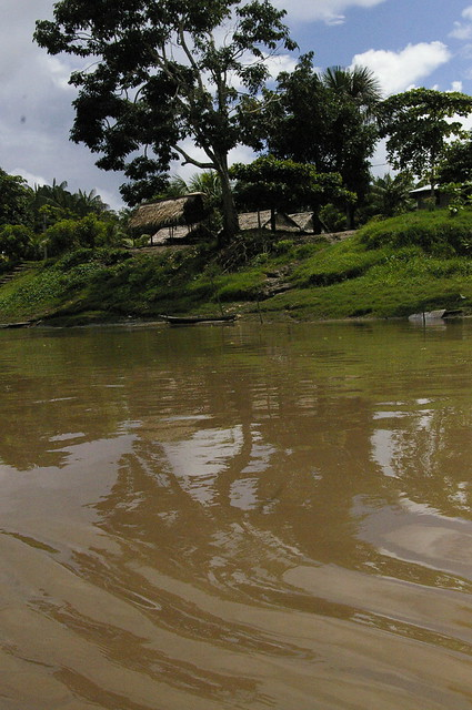 Header of Amazon River