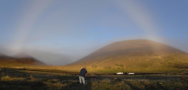 Photographer and Fogbow