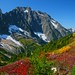 Just above Cascade Pass, North Cascades National Park, Washington State, USA