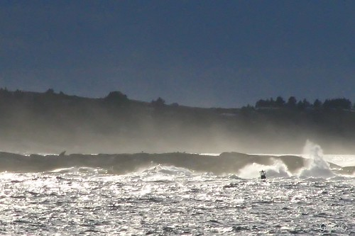 Salt Spray Rising