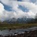 Mt. Si - Jan 27 2008