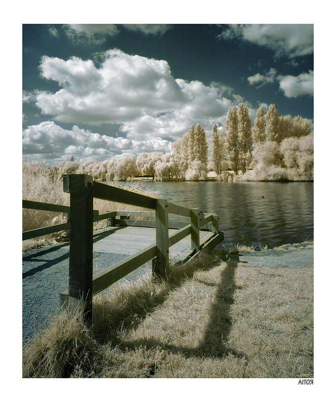lake_ir_col