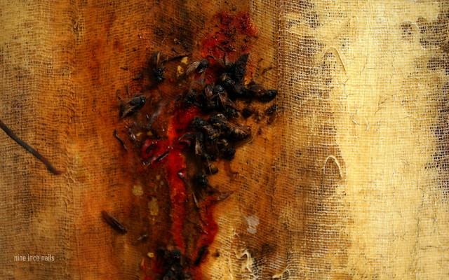 Wallpaper: The Downward Spiral #9 (Widescreen) | Flickr ...Nine Inch Nails The Downward Spiral Artwork