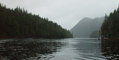 A Quiet Cove North of Ketchikan