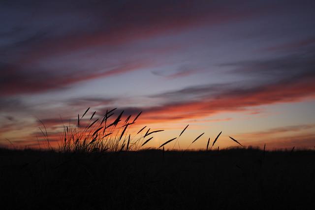 sunset at seaside essay format