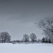 Grey Flannel Sky by DaddyNewt
