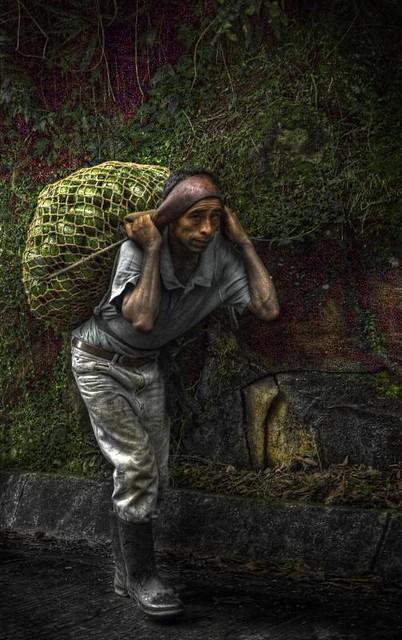 Guacamolón ambulante y sufrido