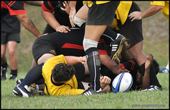 football player, sports, rugby league, rugby union, rugby football, rugby player, tackle, player, rugby sevens,