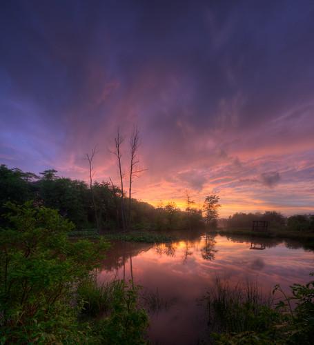 sunset landscape pond md dusk sigma swamp thunderstorm 1020 hdr odenton vertorama